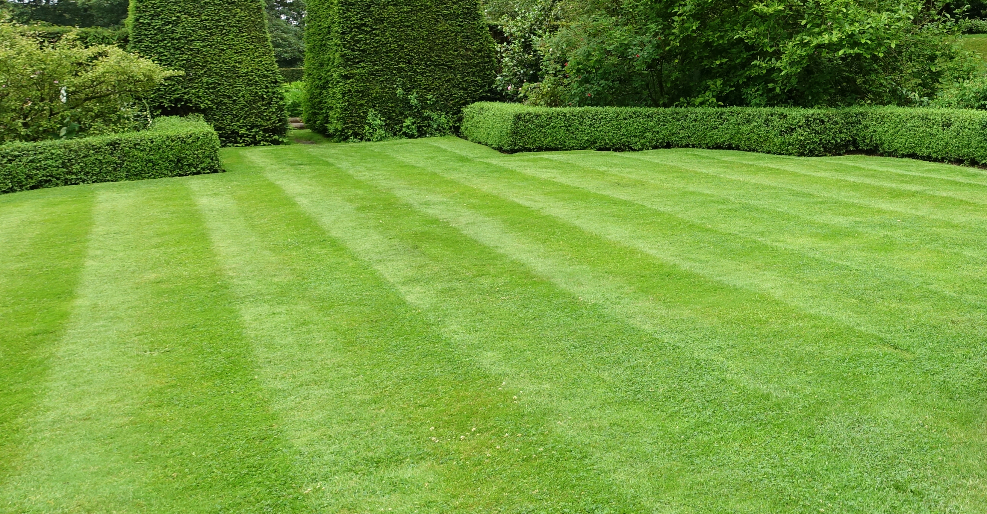 Leinster Lawn Care